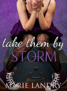 Take Them by Storm (Self-Pub, 2015)